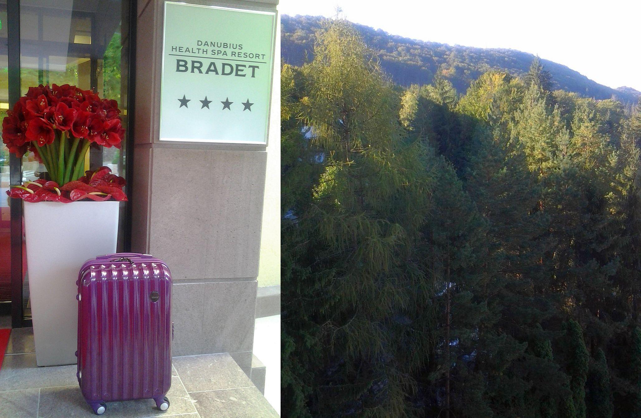 Purple Montzy de la Lamonza  m-a insotit cu gratie si eficienta in calatoria la Danubius Health Spa Resort Bradet