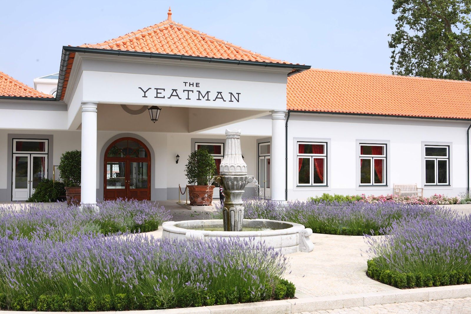 the yeatman (22)