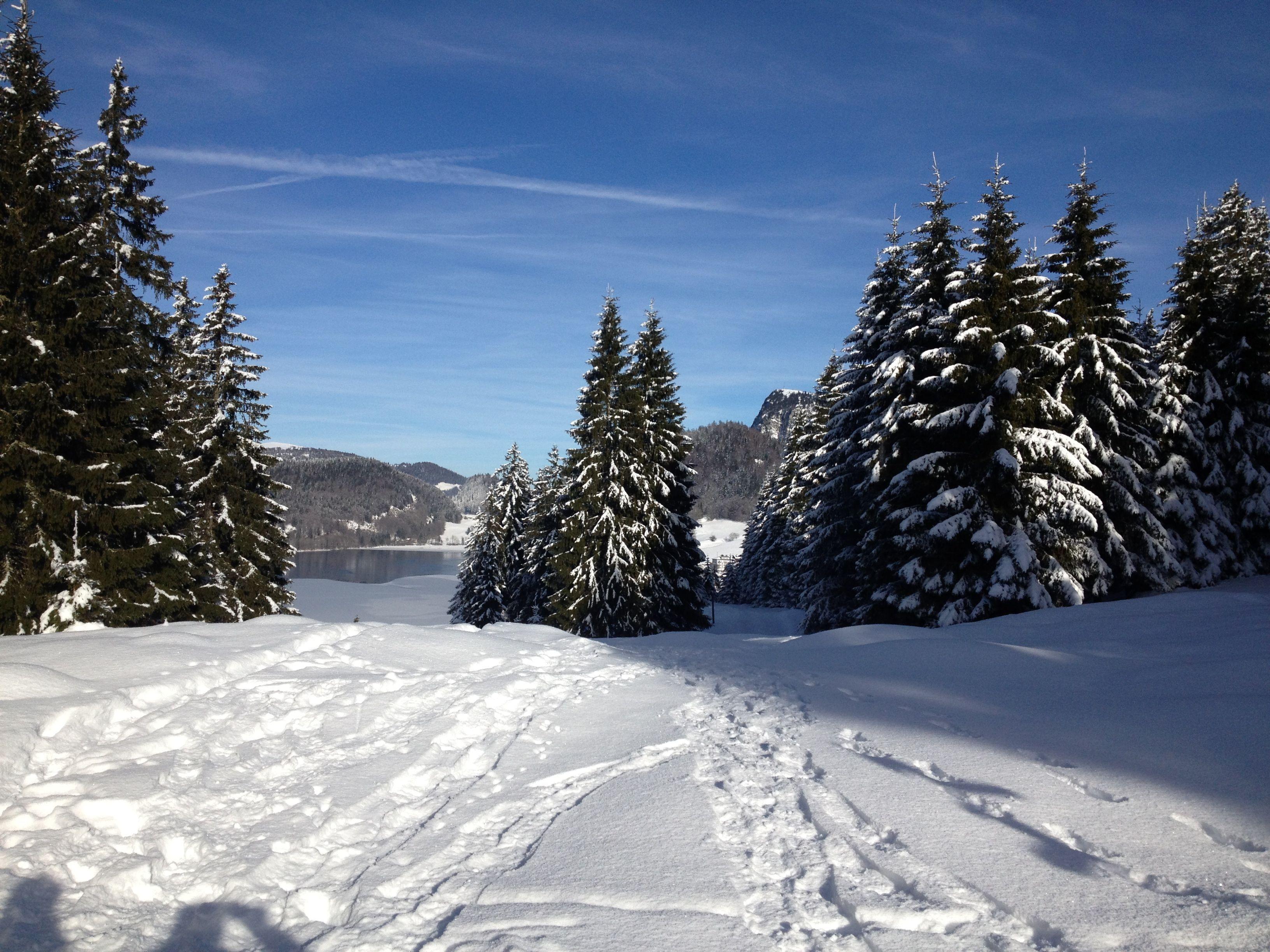 snow rackets_les charbonnieres (9)