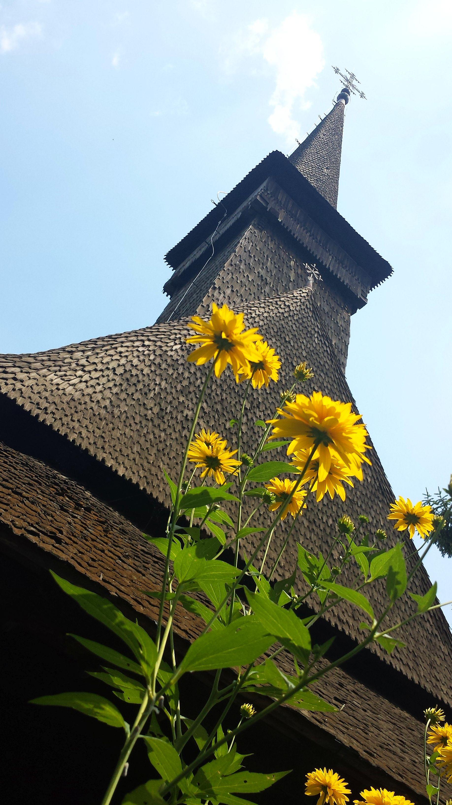 muzeul satului (12)