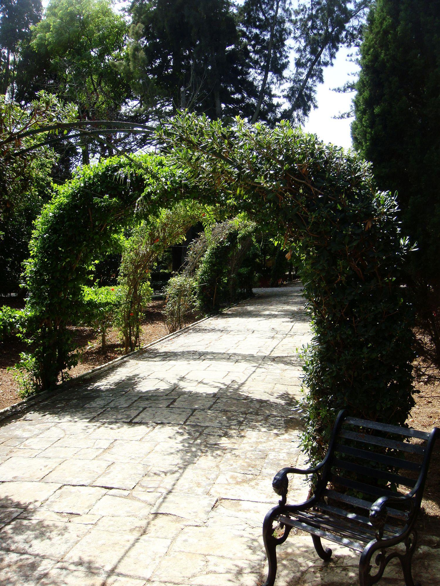 san anton gardens (12)