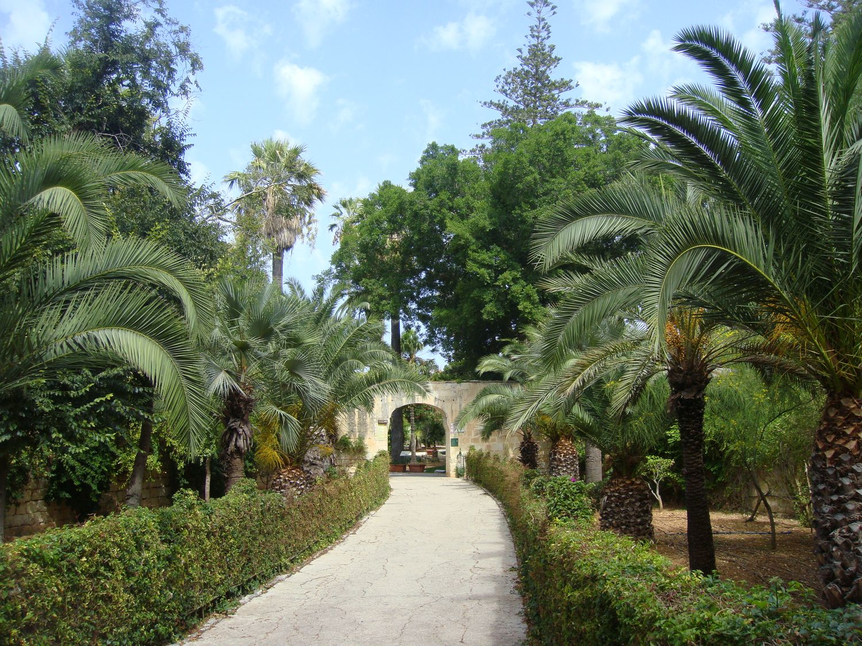san anton gardens (2)