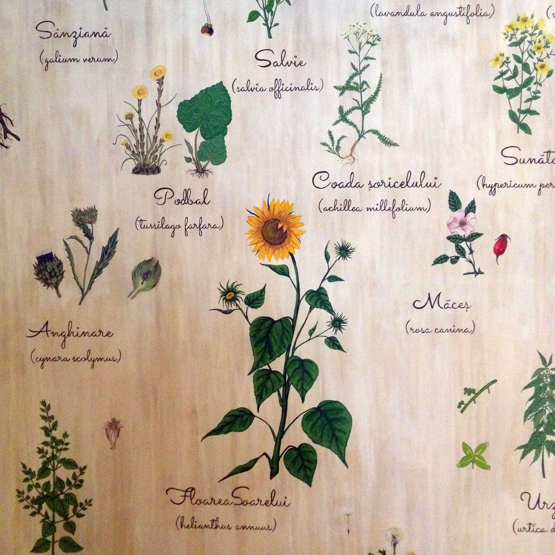 Detaliu din peretele pictat de la receptia Spa