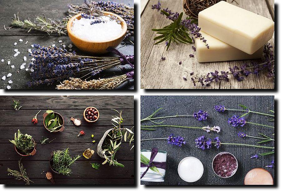 spalivingblog_autumn-beauty-basics-4