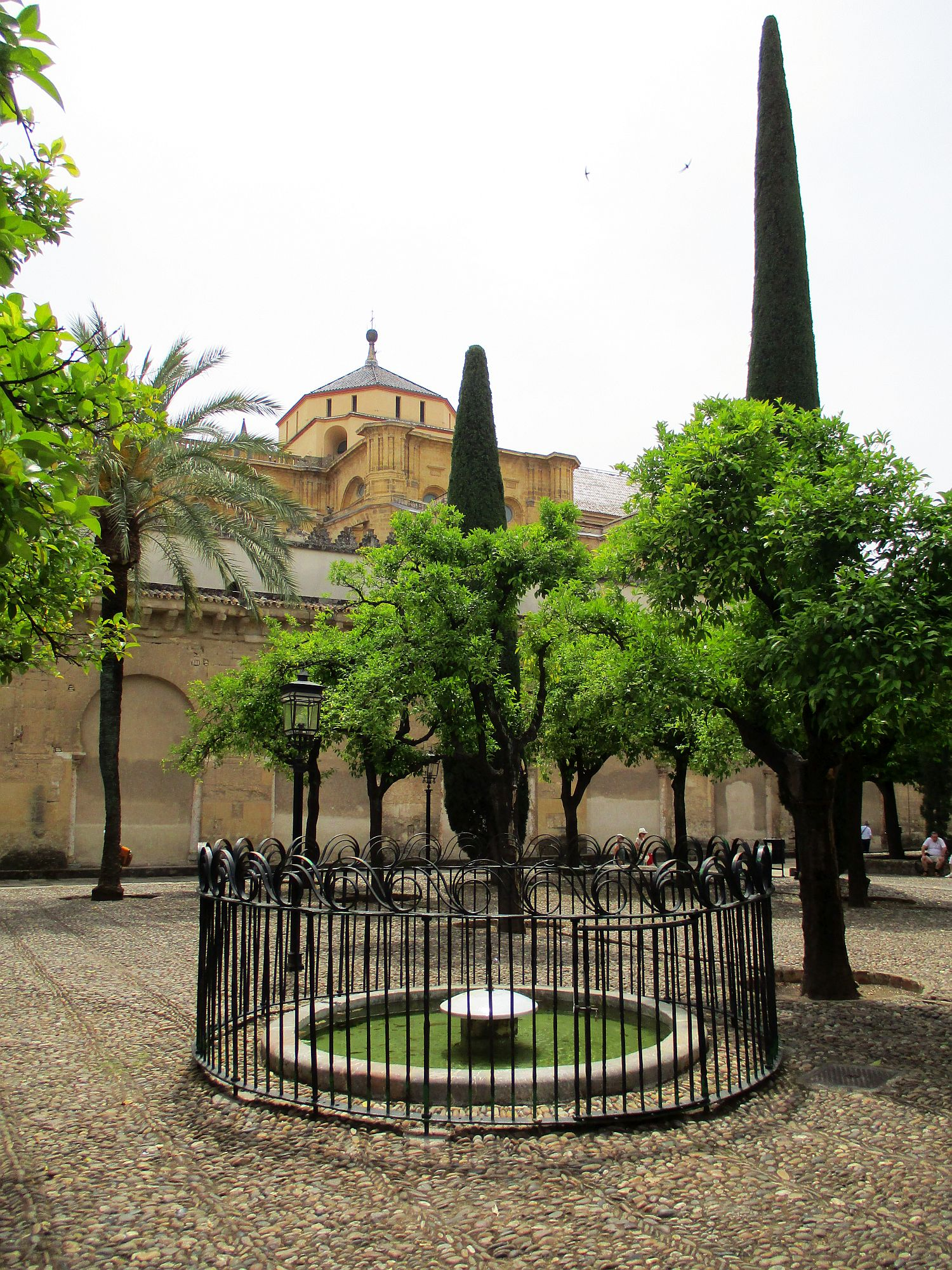 spalivingblig_one day in cordoba (46)